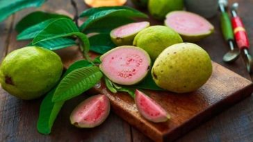 Lose Weight and Keep Your Health in Check with The Amazing Guava